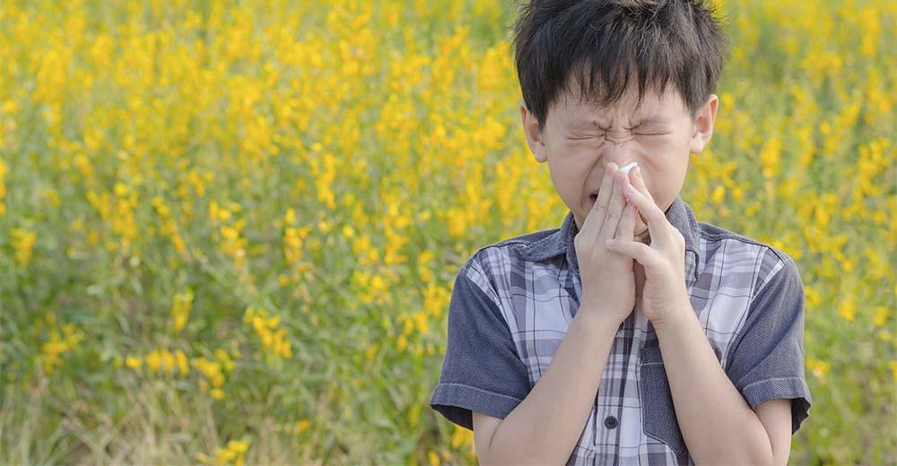 Allergie bambini